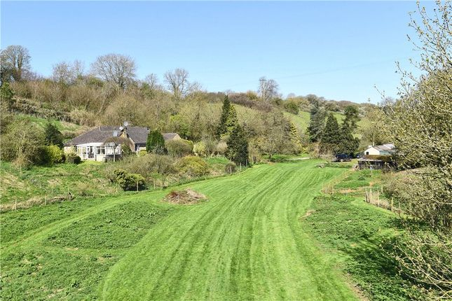 Thumbnail Detached bungalow for sale in Hardings House Lane, Sherborne