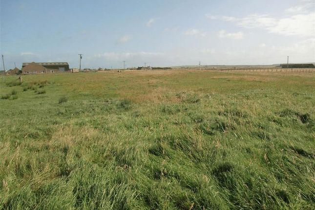 Photo 4 of Plots For Sale Scarfskerry, Thurso, Caithness KW14