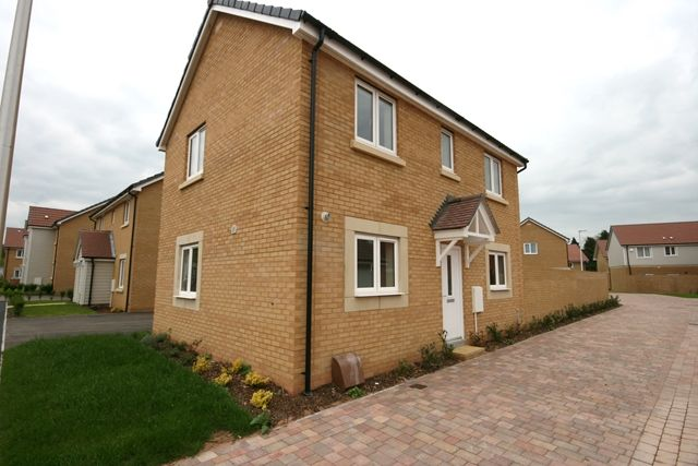 Thumbnail Detached house to rent in Nile Road, Exeter