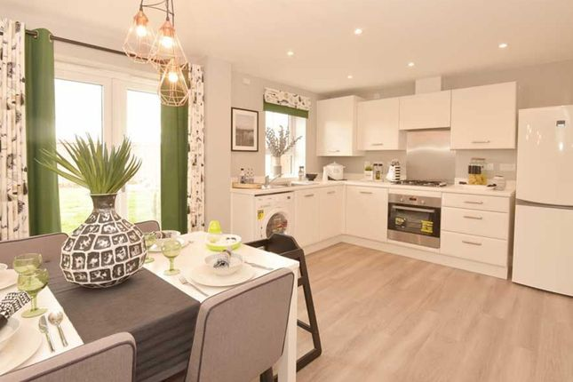 "Thumbnail End terrace house for sale in ""Finchley"" at Hampton Dene Road, Hereford"