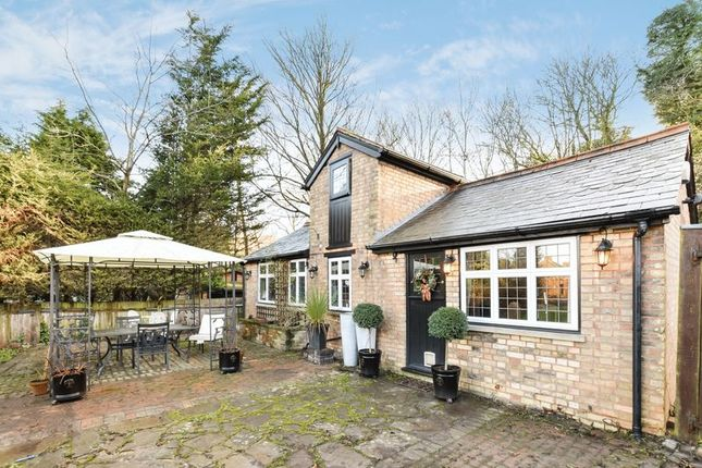 Thumbnail Detached house to rent in Watercroft Road, Halstead, Sevenoaks