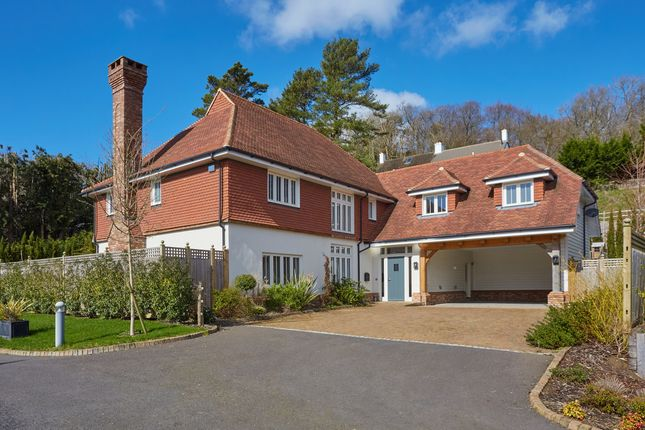 Thumbnail Detached house for sale in Croft Place, Wadhurst
