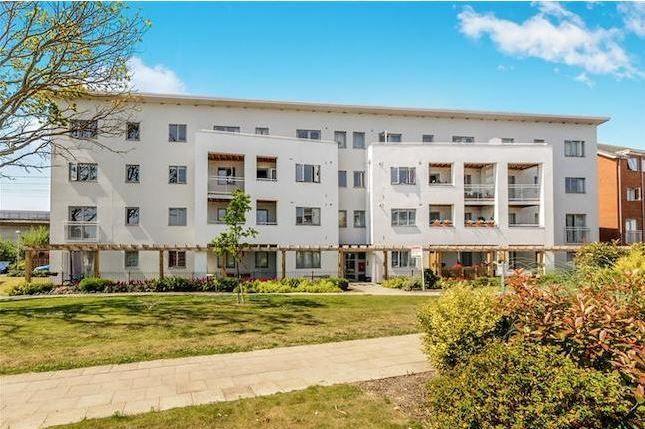 Thumbnail Flat to rent in Drummond Grove, Willesborough, Ashford