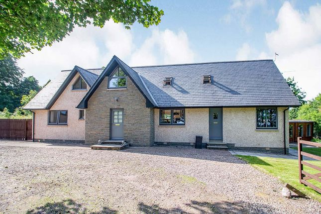 Thumbnail Detached house for sale in Dalgety, Brechin, Angus
