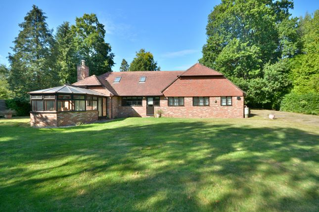 Thumbnail Detached bungalow for sale in Harborough Hill, West Chiltington, Pulborough
