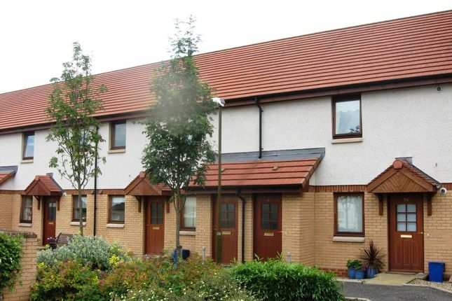 Thumbnail Flat to rent in Johnston Court, Falkirk