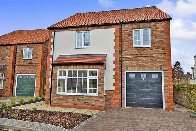 Thumbnail Detached house for sale in Chapel Street, Hambleton, Selby
