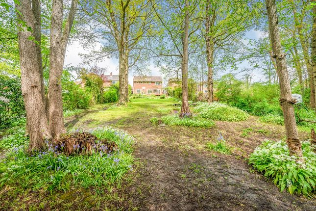 Thumbnail Detached house for sale in Southlands, East Grinstead
