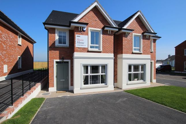 Thumbnail Semi-detached house for sale in The Preston, Ballycraigy Road, Newtownabbey