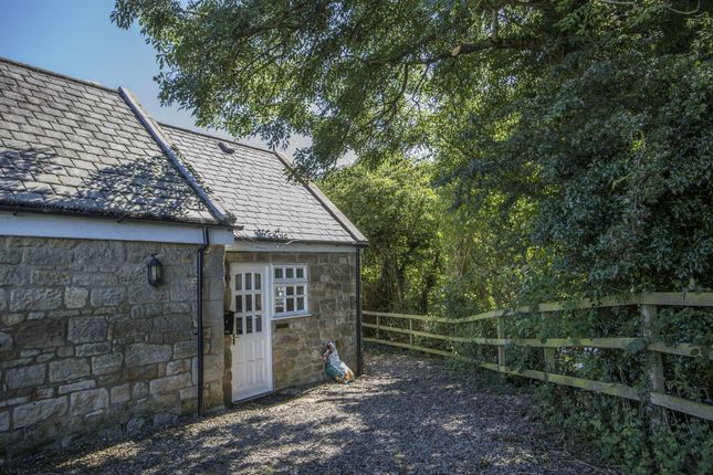 Thumbnail Bungalow to rent in Mitford, Morpeth