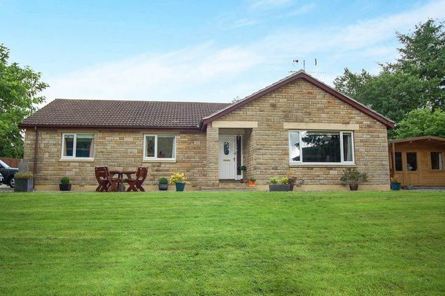 Thumbnail Bungalow for sale in Ardross, Alness