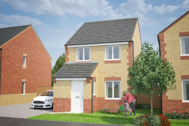 Thumbnail Detached house for sale in The Kilkenny, Pottery Park, Walker, Newcastle Upon Tyne