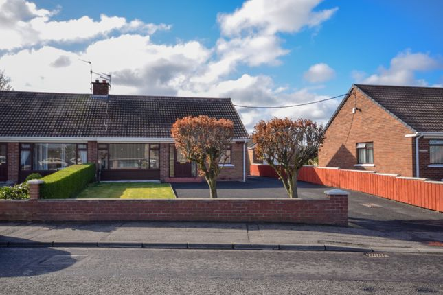 Thumbnail Semi-detached bungalow for sale in Benson Street, Lisburn