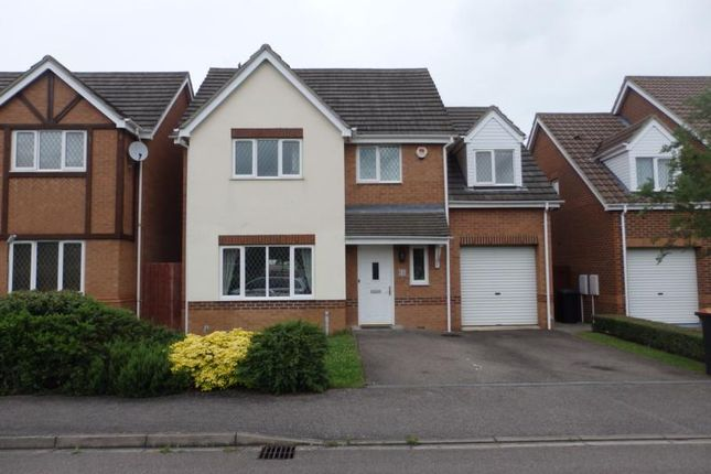 Thumbnail Detached house to rent in Bradgate Road, Bedford
