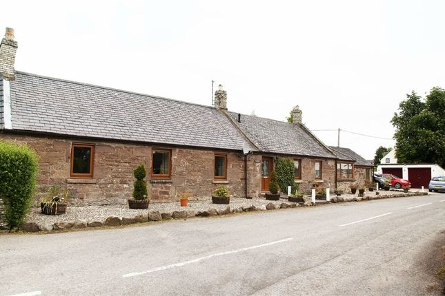 Thumbnail Cottage for sale in Ladybrow, Guthrie, Forfar, Angus