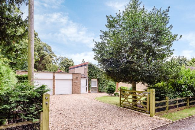 Thumbnail Detached bungalow for sale in The Avenue, Nocton, Lincoln