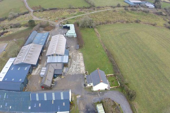 Farm for sale in Llangolman, Clynderwen