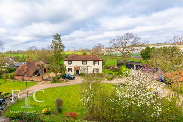 Thumbnail Property for sale in Common Road, Nazeing Common, Nazeing