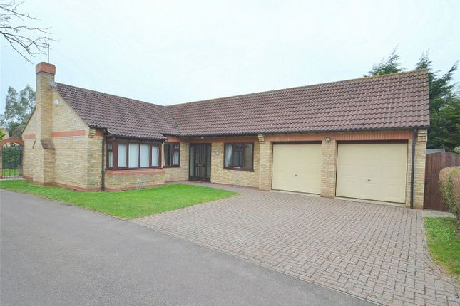 Thumbnail Detached bungalow for sale in The Paddock, Huntingdon, Cambridgeshire