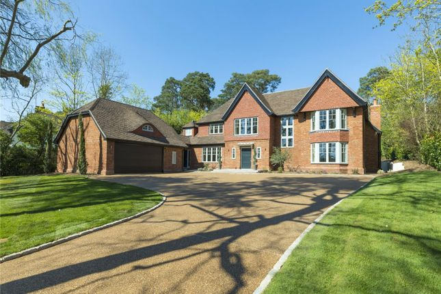 Thumbnail Detached house for sale in Woodland Drive, East Horsley, Leatherhead, Surrey