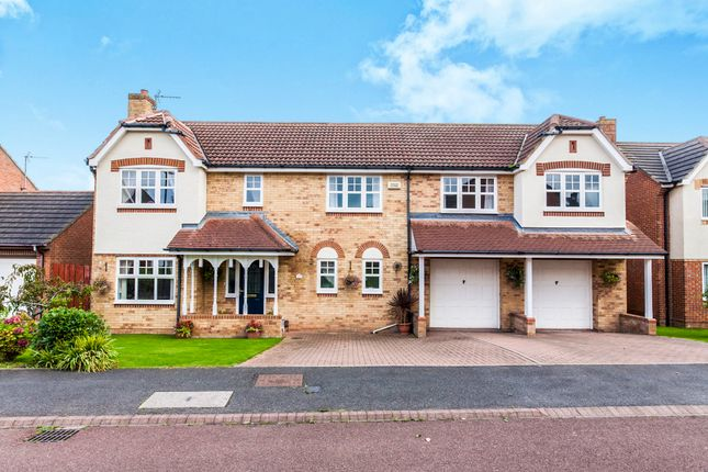 Thumbnail Detached house for sale in Siskin Close, Hartlepool