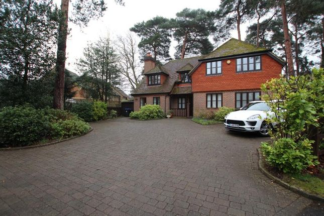 Thumbnail Detached house to rent in Oldfield Wood, Woking