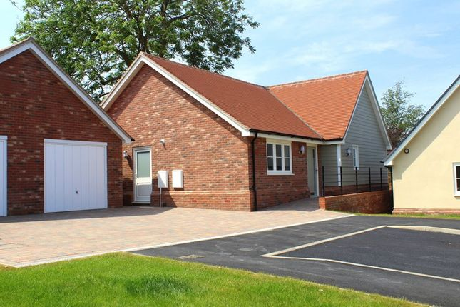 Thumbnail Detached bungalow for sale in Walton Road, Kirby Le Soken, Frinton-On-Sea