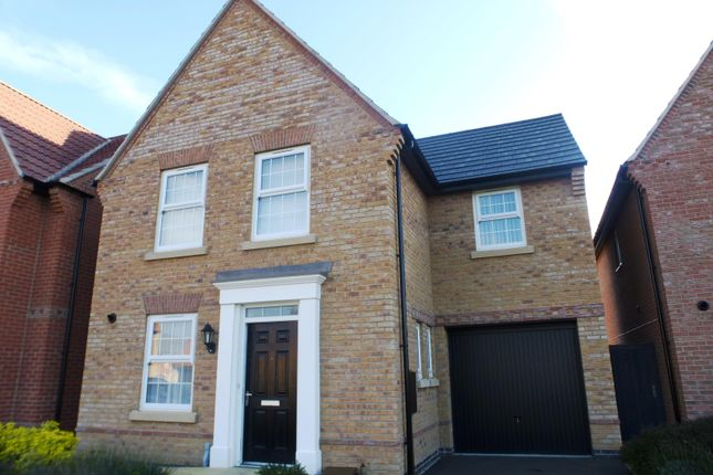 Thumbnail Detached house to rent in Selemba Way, Greylees, Sleaford