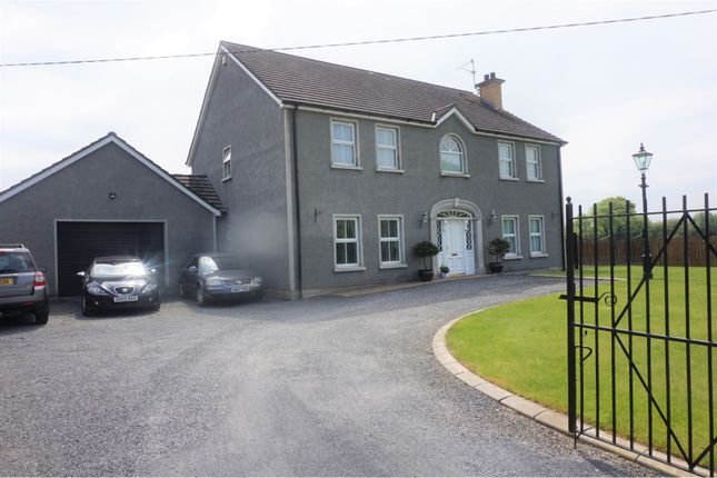 Thumbnail Detached house for sale in Drumnagoon Road, Portadown, Craigavon
