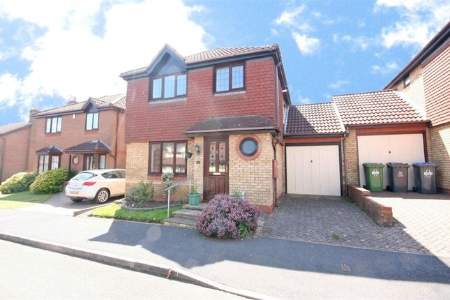 Thumbnail Detached house to rent in Celandine, Boughton Vale, Rugby, Warwickshire