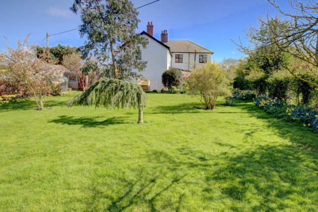 Thumbnail Detached house for sale in Dunstan, Alnwick