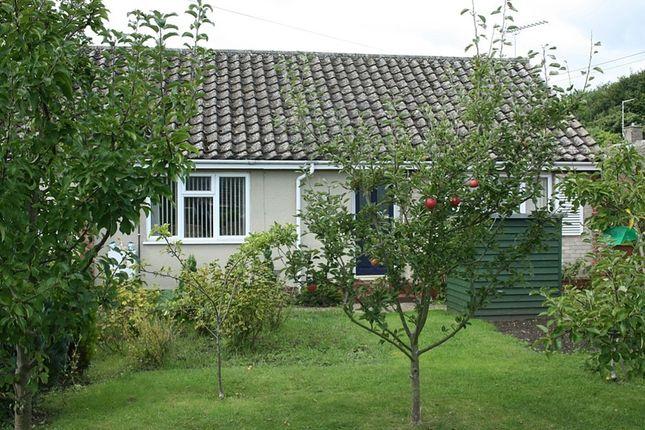 Thumbnail Semi-detached bungalow to rent in Crown Street, Brandon