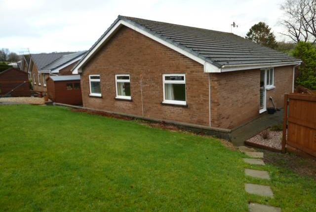 Thumbnail Bungalow to rent in Bron Y Glyn Estate, Bronwydd Arms, Carmarthen