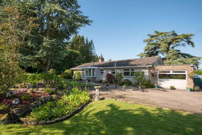 Thumbnail Bungalow for sale in Stablebrae, Durris, Banchory, Aberdeenshire