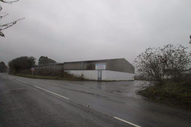Thumbnail Property to rent in Princetown Road, Yelverton, Devon
