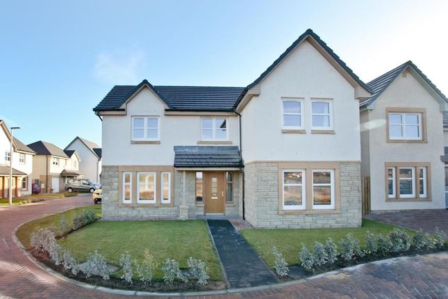 Thumbnail Detached house for sale in Adelaide Road, Kirkcaldy
