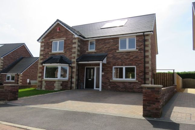 Thumbnail Detached house for sale in Cherrytree Park, Empire Way, Gretna