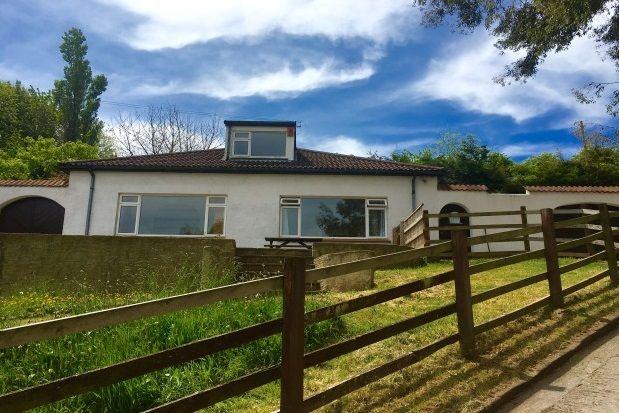 Thumbnail Bungalow to rent in Totnes Road, Paignton