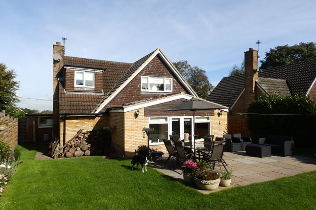 Thumbnail Detached house to rent in Back Lane, Bilbrough, York
