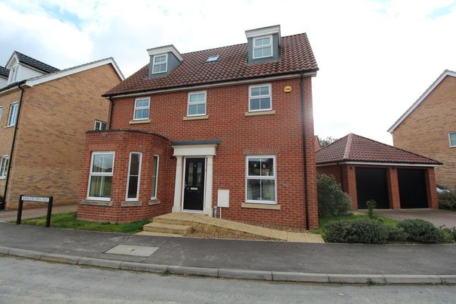 Thumbnail Detached house to rent in Barleycorn Way, Beck Row, Bury St. Edmunds