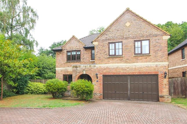 Thumbnail Detached house for sale in Ryelaw Road, Church Crookham, Fleet, Hampshire