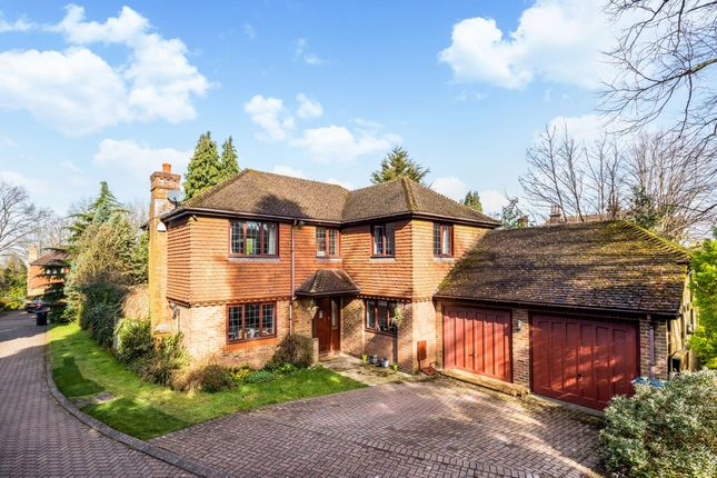 Thumbnail Detached house to rent in Oakwood Rise, Caterham