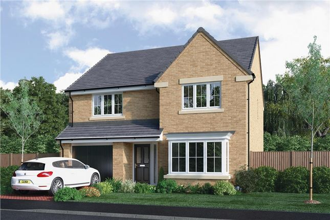 "Thumbnail Detached house for sale in ""The Chadwick"" at Choppington Road, Bedlington"