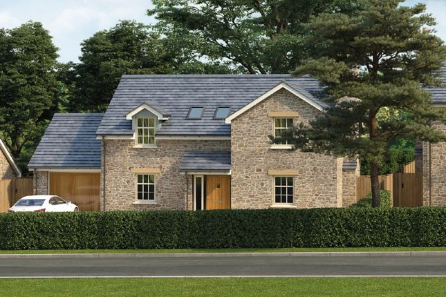 Thumbnail Detached house for sale in Trenerth View Trenerth Road, Leedstown, Hayle