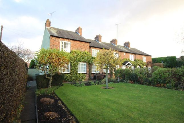 Thumbnail Cottage to rent in Derby Road, Bramcote, Nottingham