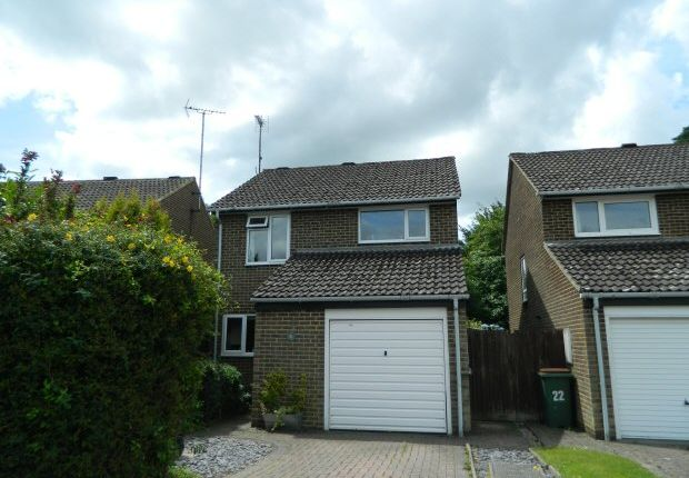 Thumbnail Property to rent in Thatchers Close, Horsham