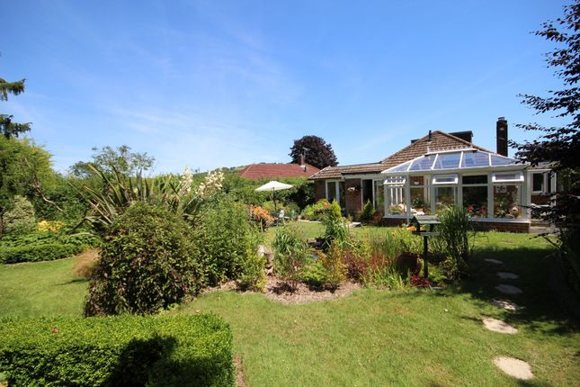 5 bed detached bungalow for sale in Downside Avenue, Findon Valley, Worthing BN14