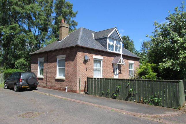 Thumbnail Bungalow for sale in Scots Gap, Morpeth