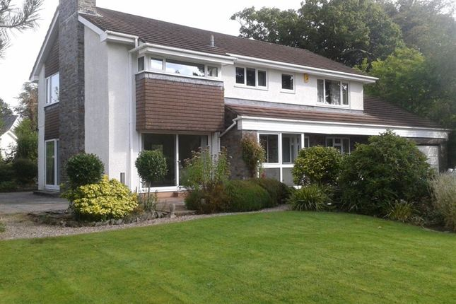Thumbnail Property to rent in Down Road, Tavistock