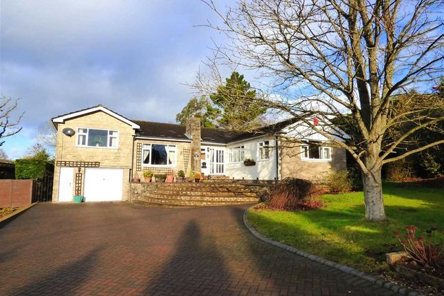 Thumbnail Detached bungalow for sale in Willow Court, 1 Pwllmeyric Close, Chepstow